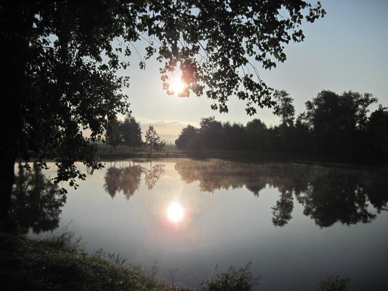 Bernartický rybník