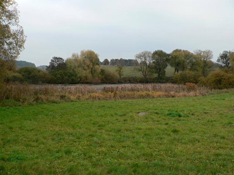 Čtvrtý úkol: vypuštěný rybník