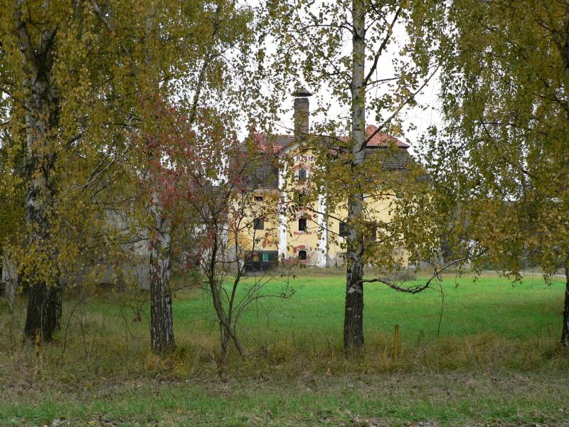 Pěkný nápad: vyfotit Slavoňov skrz stromy..