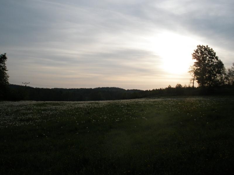 Ranní sluníčko u rybníka Krajíc