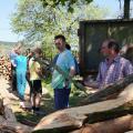 Mokré dřevo bylo třeba složit do hranice na vyschnutí